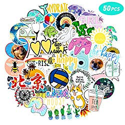 50 Pcs VSCO Vinyl Cute Cool Waterproof Stickers for Hydro Flask, Water Bottle and Laptop – Suitable for Kids, Girls, Teens, Women (C1)