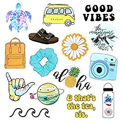 Roberly VSCO Stickers for Water Bottles, Trendy Aesthetic Laptop Stickers, Waterproof Stickers Vinyl Stickers for Teens VSCO Girl Essential Stuff Cute Stickers for Hydroflasks Computer Photo Sharing