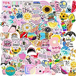 Watter Bottles Stickers for Vsco Girls(Big 100 pcs) Aesthetic Stickers for Teens,Girls,Luggage Bicycle Notebooks,Computers,Phone,Cars 100% Vinyl